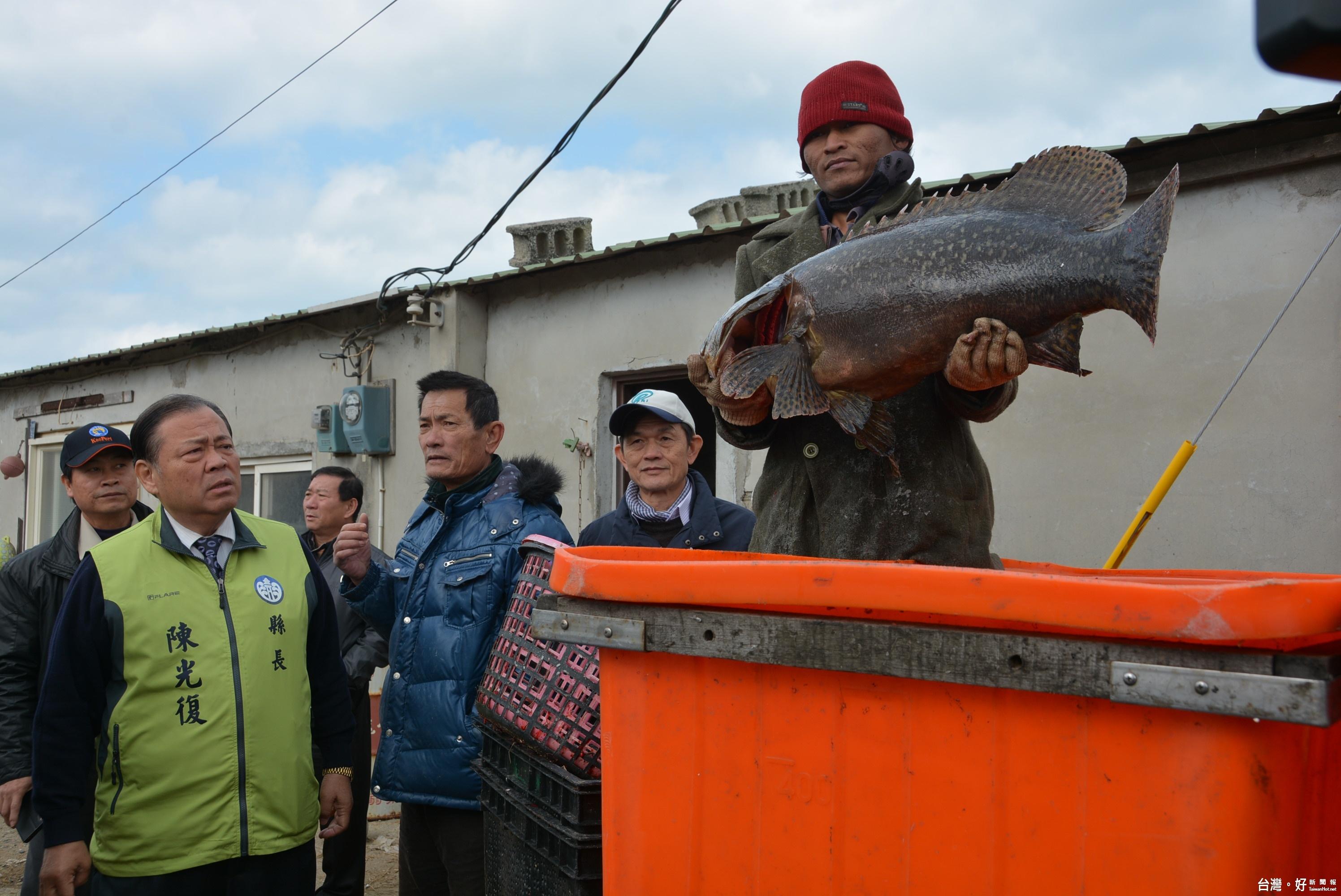 關心寒害災情 陳光復巡視魚塭養殖戶