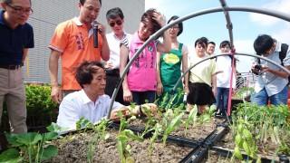 台北市副市長林欽榮視察興隆公共住宅屋頂農園。