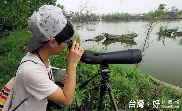 冬侯鳥來台 百年貯木池邀您賞鳥趣
