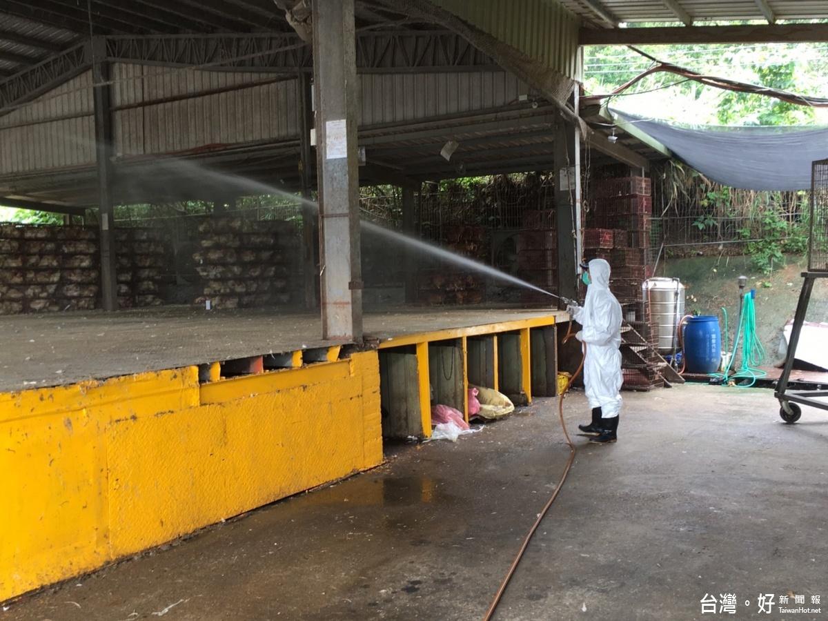 落實生物安全管理 防高病原性禽流感