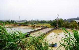 鎮興里客家生態埤圳生活空間以及大坑缺溪客家公園,成為平鎮獨特的親水綠帶。