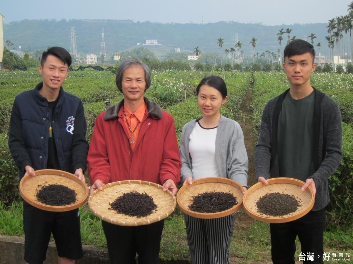 名間製茶達人研製24節氣茶 吃在當季安全也健康