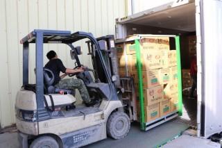 農糧署輔導高麗菜宅配,也讓甘藍外銷日韓馬新美等國家。