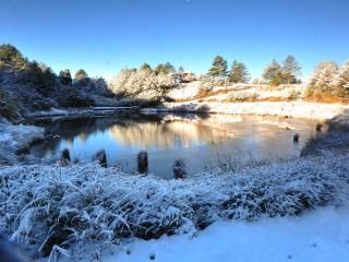 大雪山國家森林遊樂區天池下雪的美景。(圖/陳怡裕攝、東勢林區管理處提供)