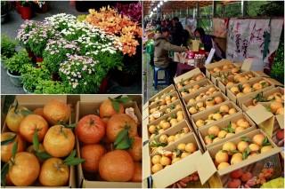 宜縣桶柑花卉等農特產促銷活動起跑了。(圖/記者陳木隆攝)