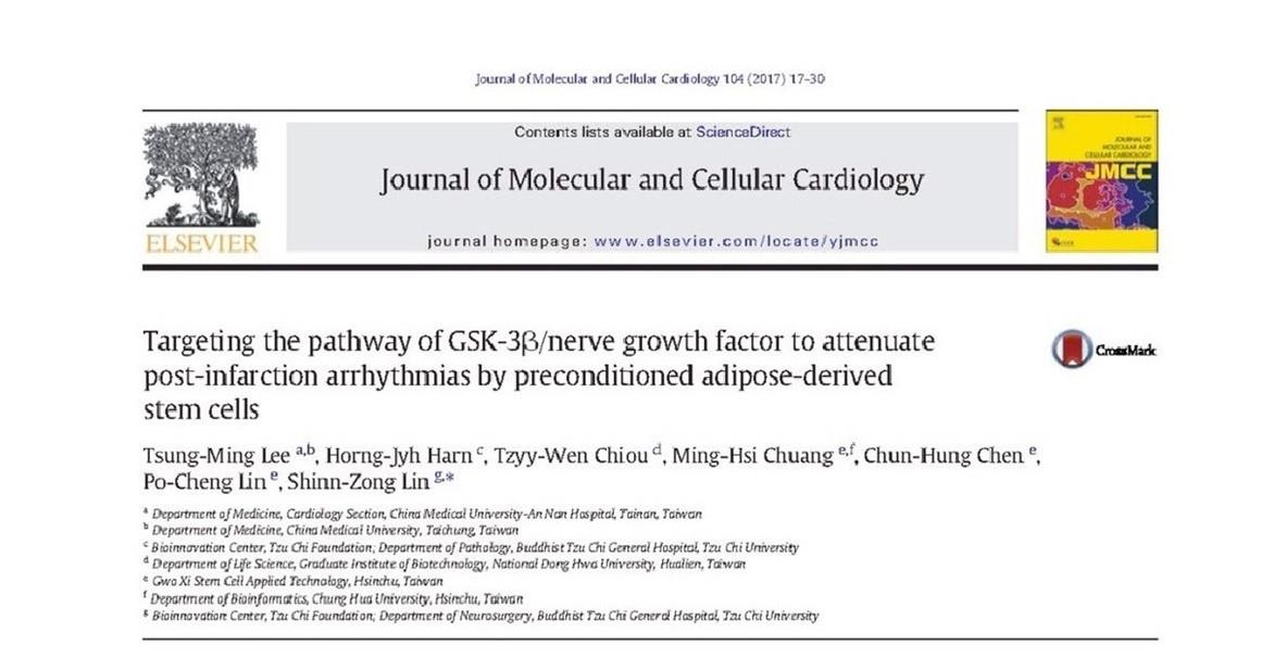 治療心律不整研究 國璽幹細胞登國際心臟科學期刊