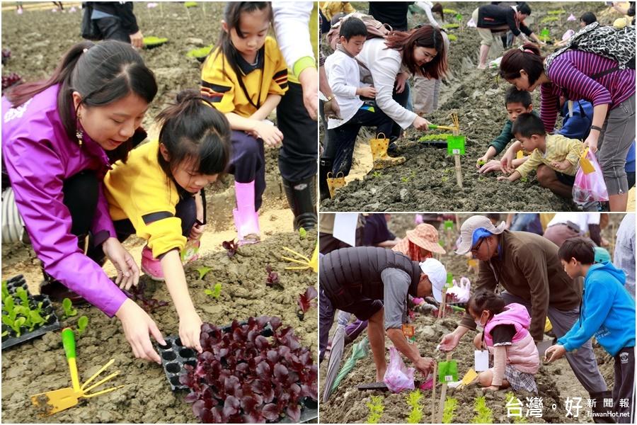 共享綠色生活 佃佃小農種菜去