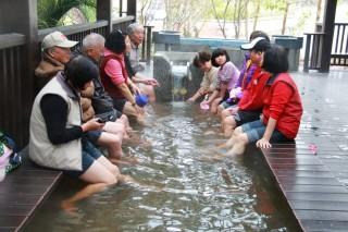 連假出遊清水岩溫泉 吸引不少人前來嘗鮮體驗