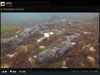 綠島鄉民俞明宏在臉書po文指出可疑船隻通過綠島,讓綠島北面的海岸線與海底都被重油汙染。(圖/翻攝俞明宏臉書)