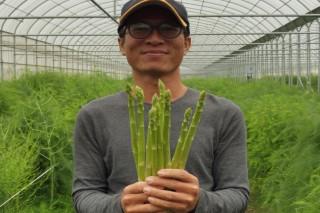 黃文鵬說,蘆筍從地底冒出後,一節節往上成長,蘆筍的長成過程像是創業般,一切都得從零開始。(記者/黃芳祿攝)