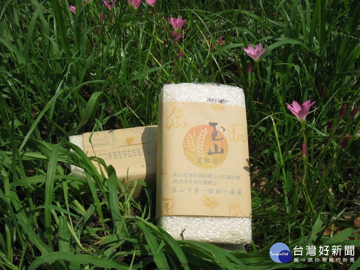 玉山下的第一畝田 布農族有機稻作生機蓬勃