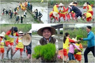 壯圍稻秧體驗,大人小孩樂在其中。(圖/記者陳木隆攝)