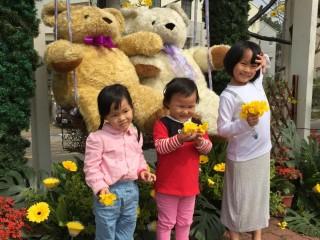 花徑漫步逛市集,幸福小熊打卡最吸睛