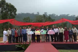 螢風來 茶意趣 品味生態阿里山 茶、生態之旅暨產業行銷推廣活動 25日熱鬧登場