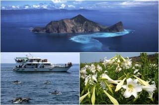 龜山島旅遊,賞花賞景賞鯨豚樂趣多。(圖/東北角暨宜蘭海岸管理處提供)