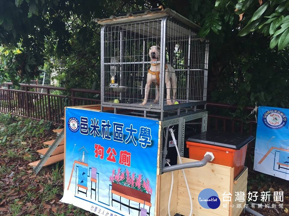全國首創、世界唯一 「狗公廁」獲專利