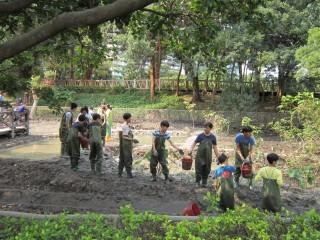 志工們挽起衣袖,汗流浹背,穿上青蛙裝(涉水衣)辛勤復育。(圖片來源/台北市政府)