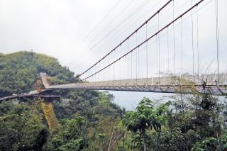 全台「最長吊橋」太平雲梯 海拔千尺遠眺嘉南美景