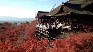 旅遊搜尋引擎Skyscanner日前公布一向調查,台灣人愛去日本旅遊的主因竟不是旅遊景點多、東西很好買,而是認為日本治安良好,環境乾淨整潔。(圖/Pixabay)