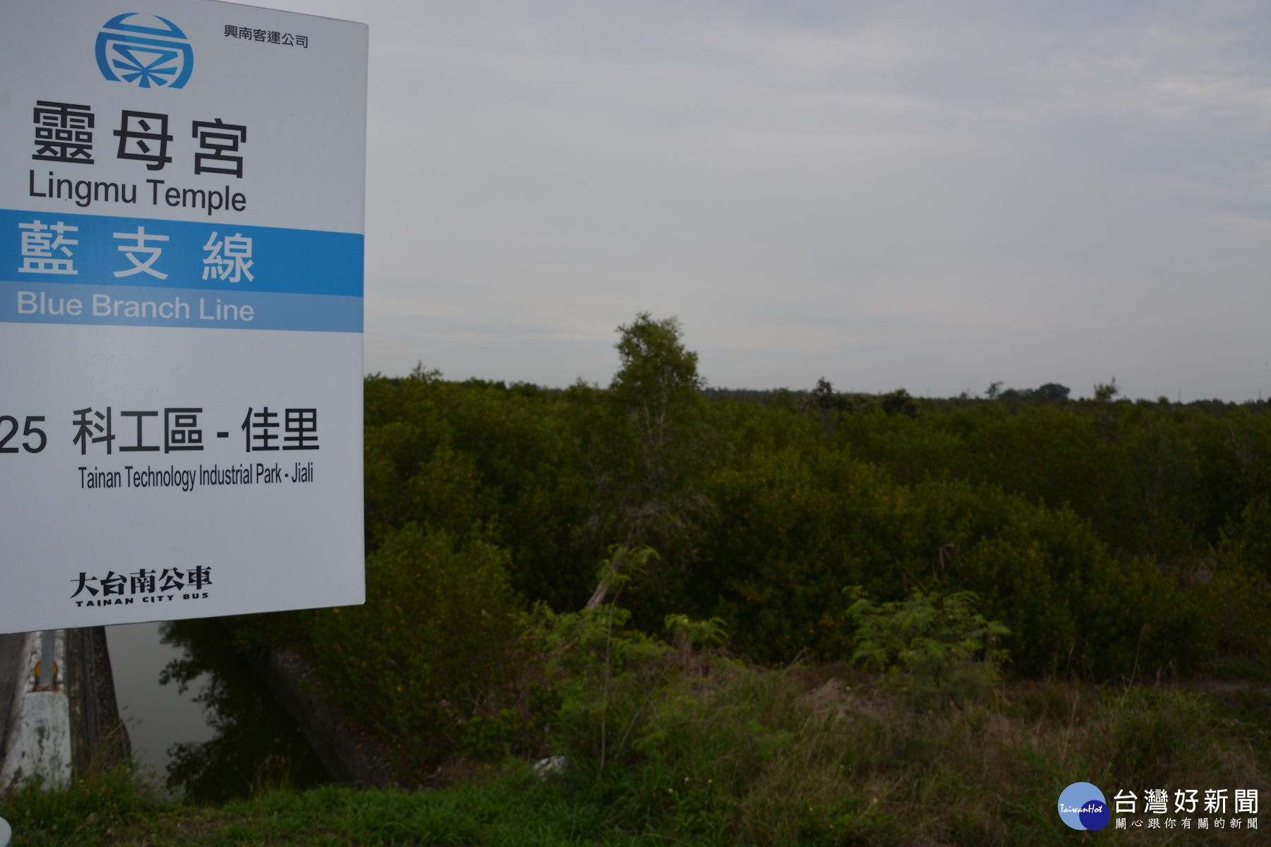 七股科工區審查通過 台南沿海年增近萬工作機會