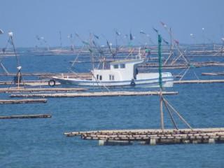 每年5月至11月為台灣汛期,嘉義縣政府呼籲殖漁民做好防汛措施