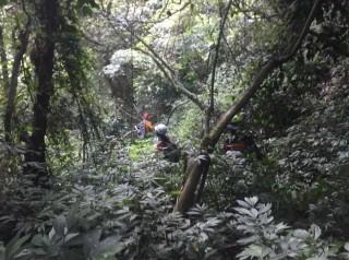 迷路的男子無法說出明確地點致搜救人員更增困難度。(南投消防局提供)