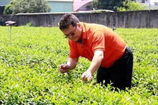 謝棨安常自己巡視茶園,要有良好管理才能製好茶。(記者扶小萍攝)