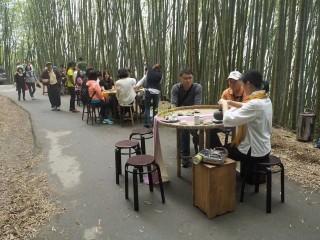 圖說:6月17、18日帶您探訪星海中茶席、竹林茶席 體驗視覺、味覺雙重饗宴,瑞里綠色隧道(竹林茶席)