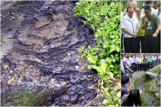礁溪龍潭湖畔的小溪流湧現大批圓吻鯝魚。(圖/記者陳木隆攝)