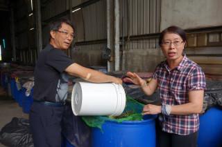 慈濟志工廖乾雨跟太太周慈蕙回收菜市場、水果攤不要的菜渣果皮,製作成黃金色澤的有機環保酵素。