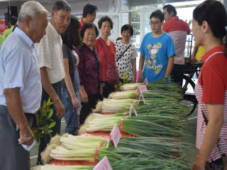 大安區農會二十七日上午,假大安國小舉辦青蔥文化節,民眾在青蔥  攤購買踴躍,場面十分熱鬧。(記者陳榮昌攝)