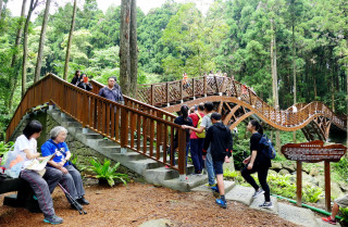 溪頭「銀杏橋」是國內目前最長的第一座木結構橋樑。
