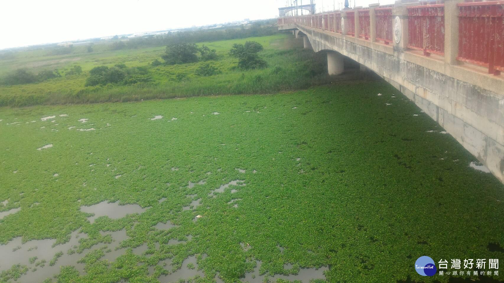 嘉縣府呼籲農漁民做好防汛措施 避免發生水產物疾病問題