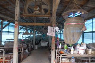 防日本腦炎,動保處要求養豬場裝設補蚊燈。