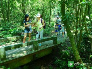 自主探索的定向尋寶,憑藉一紙地圖與活動摺頁,找到森林步道中的藏寶點位,測試挑戰著的體力與機智。(圖/台北市政府工務局大地工程處提供)