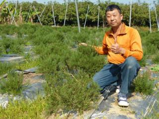 經營禾光農莊的汪慶鍾,以台灣本地種植之香草類芳香藥用植物等,產製各類健康產品。
