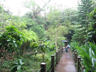 富陽自然生態公園獨特美景吸引民眾參訪(圖/台北市政府工務局提供)