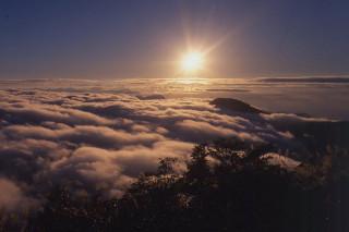 從望洋山步道觀賞到的日出美景。(圖/羅東林區管理處提供)