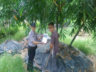 太平警方啟動護竹。林重鎣攝