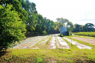 龜山苗圃綠環境生態園區。