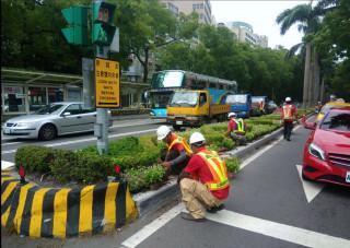 迎接世大運 20萬株灌木進駐台北街頭
