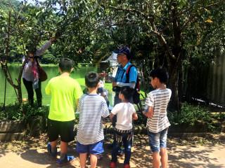 埔里鯉魚潭「蝴蝶營隊夏令營」活動,小朋友細細聆聽導覽導師的解說。