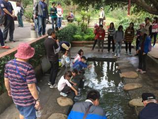 桃園市政府特別在「桃園自在遊」線上旅遊平台推出地景藝術節限定兩條一日遊程。