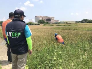 環保局說明鄰近滲眉埤農地污染調查進度 。