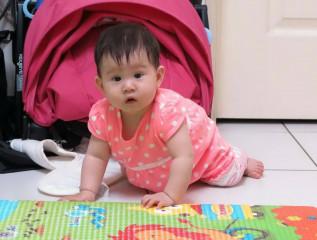 寶寶爬行是全身運動。(家長提供)