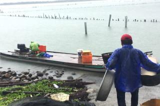 颱風天,台南七股潟湖盡是野生海產,網罟漁民準備好大臉盆等器具,準備接收老天爺賞的颱風大紅包。(圖/記者黃芳祿攝)