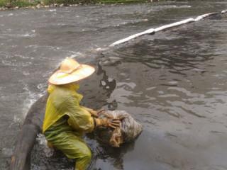 桃園市環保局特別推出「油污染應變作業手冊」及「油污染預防宣傳DM」,供民眾下載或線上閱覽。