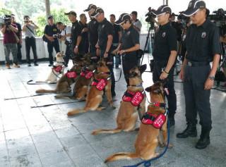 確保世大運體育賽事選手及觀眾安全,警犬隊偵爆訓練2日進行驗收。(圖/記者黃村杉攝)