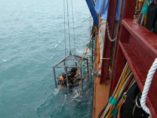 幫助八里海放管延壽 北市出動「海底救援隊」