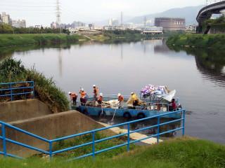 基隆河上游出現大批死魚 北市將嚴密監控河川水質